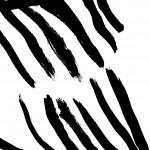 noir carré 7
